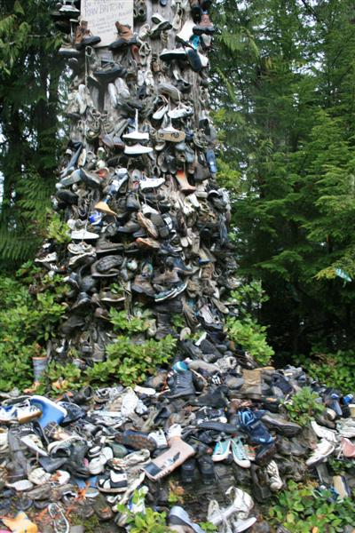 Shoe Tree, every size and color possible.....
