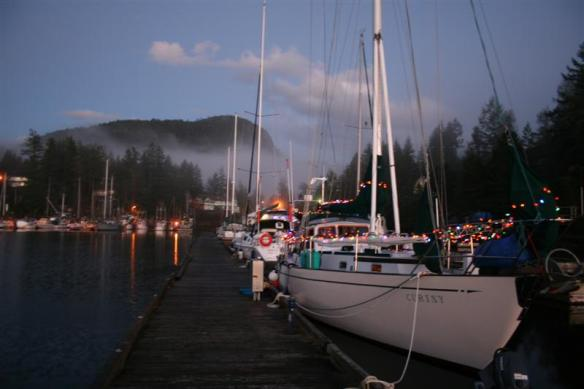 Curtsy with her Christmas lights in Pender Harbour