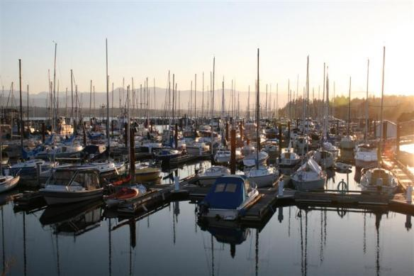 Comox, definately  a harbour for sailboats!!