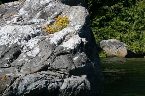 Boulders in Cutter Cove, broken off the high above cliffs.
