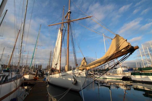 magnificent sailing ship.