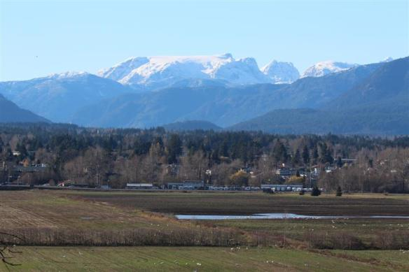 View of the Comox valley glacier, which actually is an ice field.