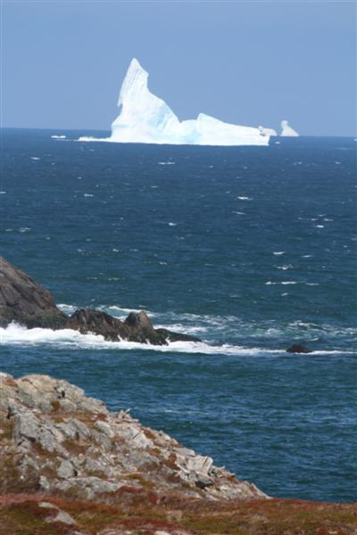 Bergs on the way to Trinity