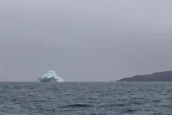Iceberg ahead!!!!!   Cape Spear to the right.