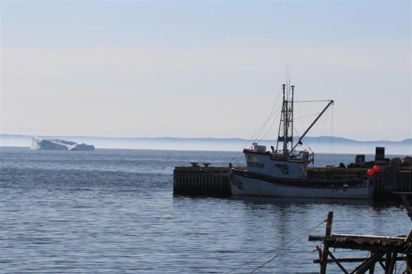 A Newfoundland scene.