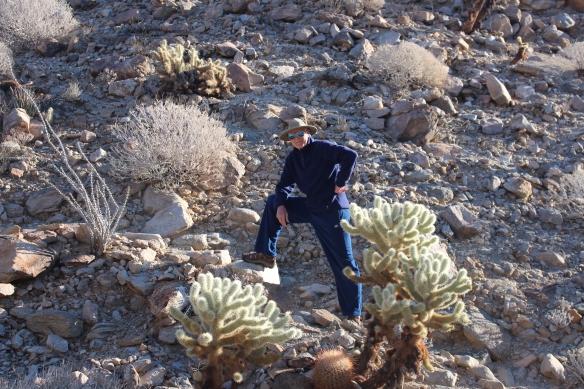 Bert among the cacti