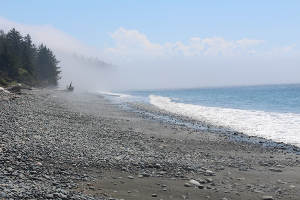 The fog rolls in overnight, and slowly dissipates during the day.....