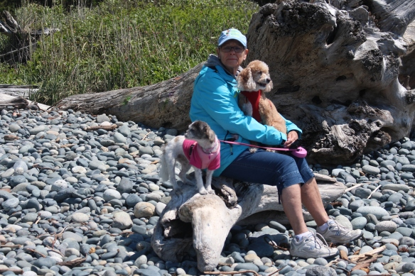Wonderful photo of Ineke with Lucy and Suki