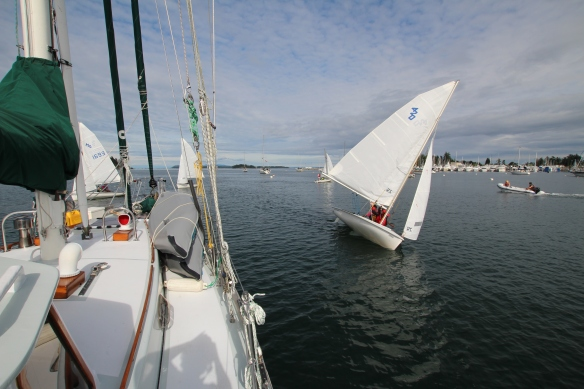 Some  of the young sailors would come close to us, but  managed to not hit us, ever!!!!