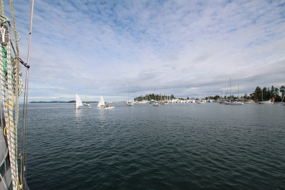 Tsehum Harbour