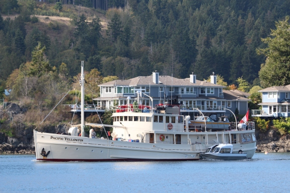MV PACIFIC YELLOWFIN,part of the sailpast.