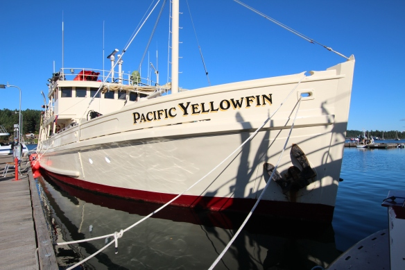 MV PACIFIC YELLOWFIN