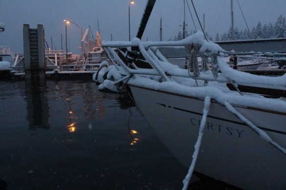 feb-snow-and-ice-and-ucluelet-004