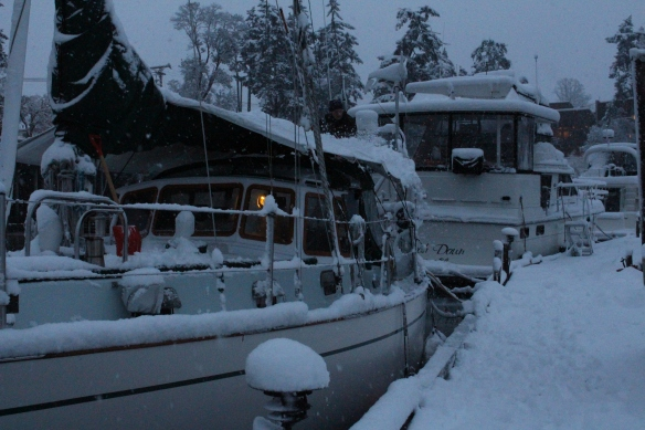 feb-snow-and-ice-and-ucluelet-006