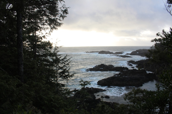 feb-snow-and-ice-and-ucluelet-082