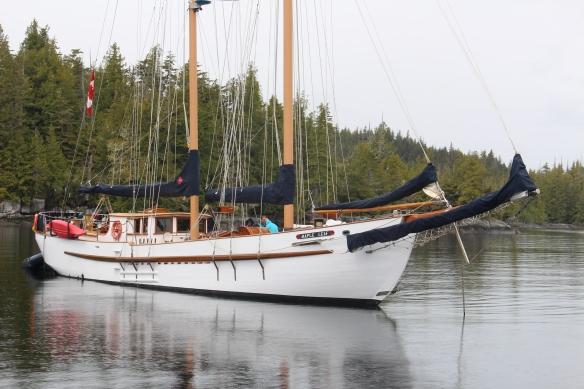 2017 GLACIER BAY ALASKA 006
