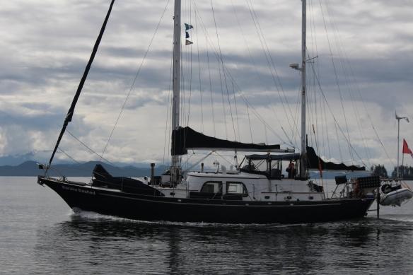 2017 GLACIER BAY ALASKA 161