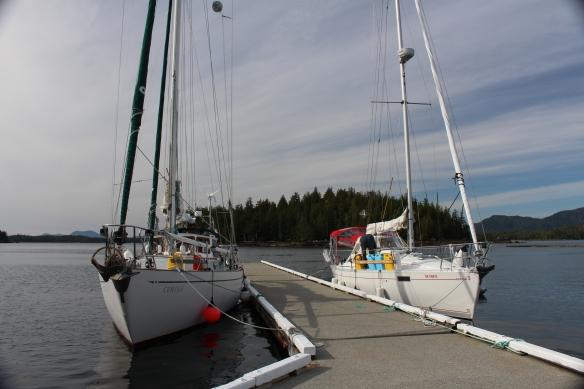 2017 GLACIER BAY ALASKA 212