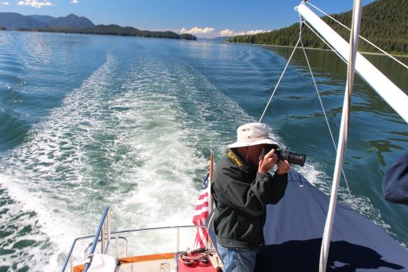 Alaska Tracy arm Taku bay 131