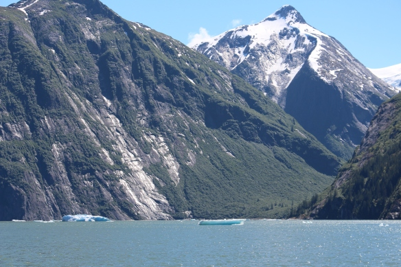 Alaska Tracy arm Taku bay 228