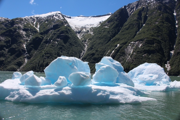 Alaska Tracy arm Taku bay 267