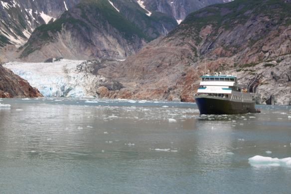 Alaska Tracy arm Taku bay 284