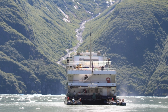 Alaska Tracy arm Taku bay 303