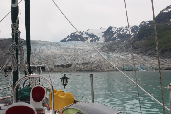 HOONAH GLACIER BAY BLUE MOUSE COVE 111