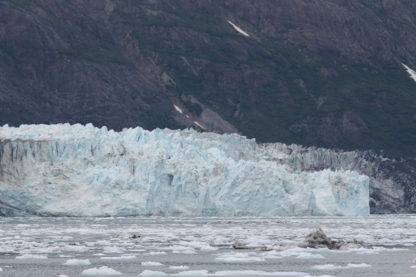 HOONAH GLACIER BAY BLUE MOUSE COVE 203